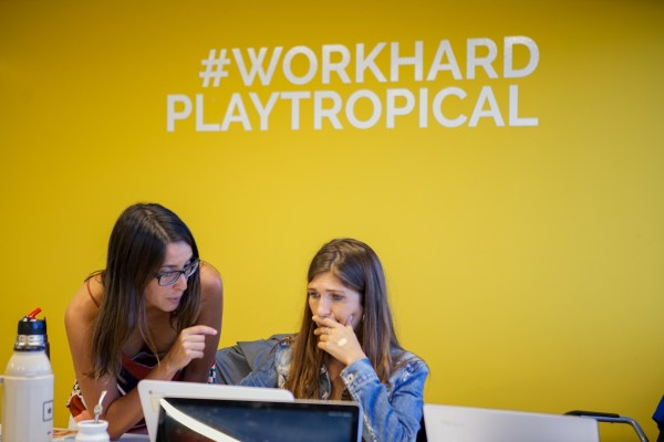 Image: Work Hard Play Tropical