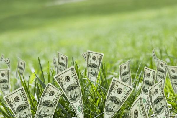 Photo: Money saving tips