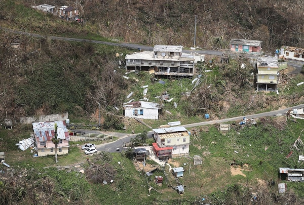 Image: Downed trees surround damaged homes in the aftermath of Hurricane Maria