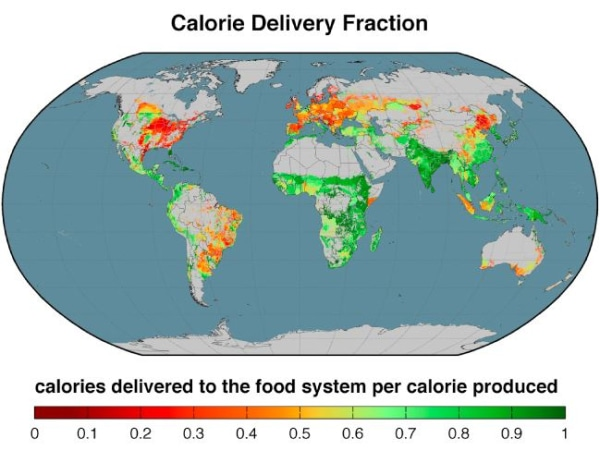 Graphic on calories