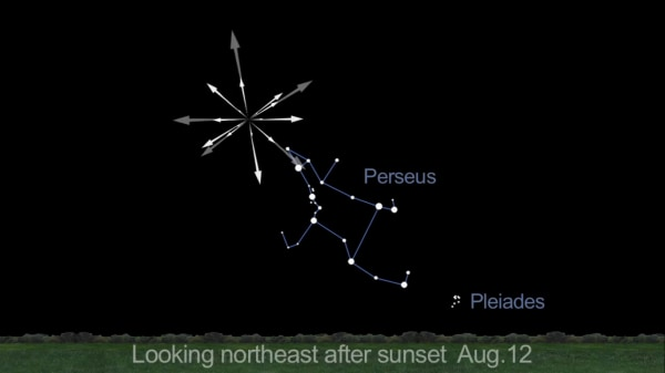 This NASA graphic shows the location of the Perseid Meteor Shower radiant in the night sky during 2013 peak on Aug. 12 and 13.