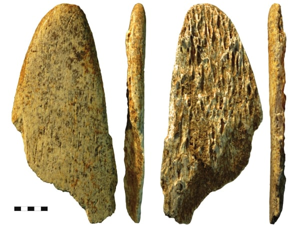 it wasn't just a one off creative project. Four examples of specially shaped bone tools were found at two different Neanderthal sites.