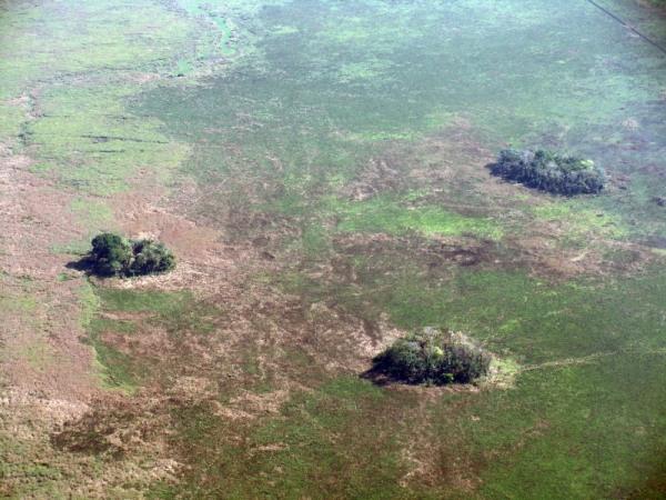 Image: Earthen mounds