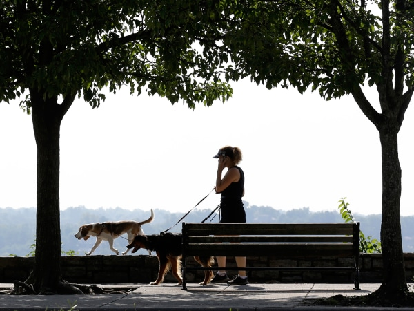 A woman walks two dogs along the Eden Park Overlook by the Ohio River across from northern Kentucky, on Aug. 28, 2013, in Cincinnati.