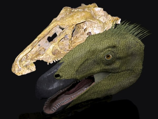 Image: Erlikosaurus