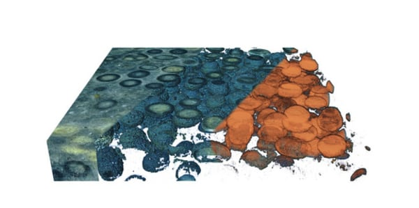 This 3D model reveals the inside of an oolite – a rock containing sand grains coated in concentric layers of calcium carbonate.