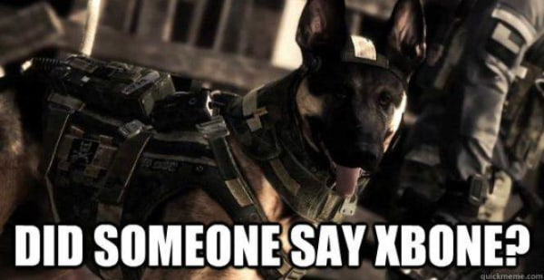 "The fact that Riley was introduced alongside Microsoft's next-generation Xbox One only helped cement the dog's celebrity status given how easily the nickname ""Xbone"" and a dog seemed to go together."