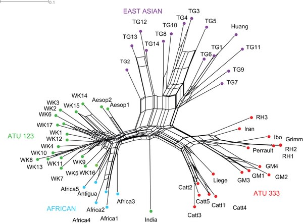 Image: Story tree