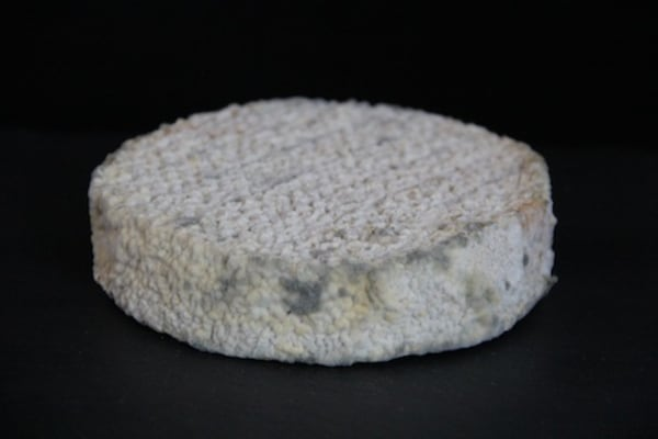Writer Michael Pollan contributed bacteria from his bellybutton that cultured this farmhouse cheese.