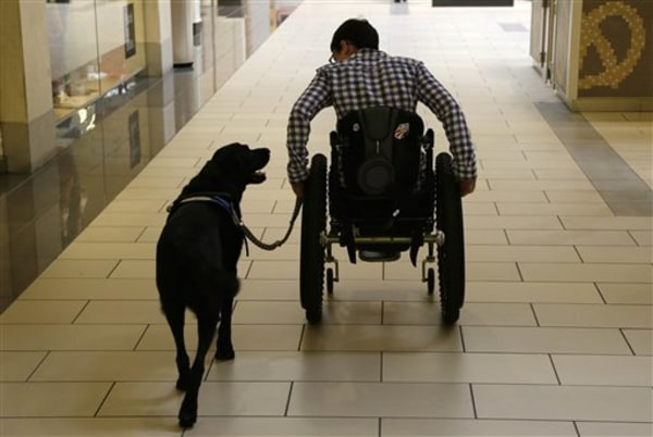 In this photo taken Tuesday, Oct. 8, 2013, Wallis Brozman is aided by her service dog Caspin  while going through a shopping mall in Santa Rosa, Calif...