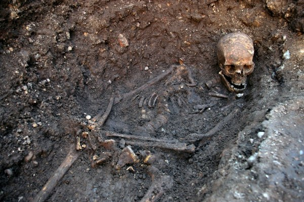 (FILES) An undated handout picture released on February 4, 2013 from the University of Leicester shows the skeleton of king Richard III found at the G...