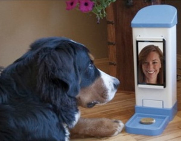 Remotely Give Dog Treat