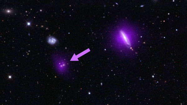 This optical color image of galaxies is seen overlaidwith X-ray data (magenta) from NASA's black hole-hunting NuSTAR space telescope. The arrow points to magenta blobs indicating giant, supermassive black holes discovered by the space telescope.