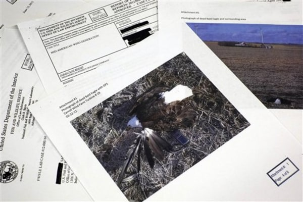 This photograph made in Washington, Wednesday, Sept. 11, 2013, shows pages from a U.S. Fish and Wildlife Office of Law Enforcement document obtained w...