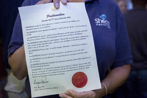 Image: Proclamation for Granddad the fish