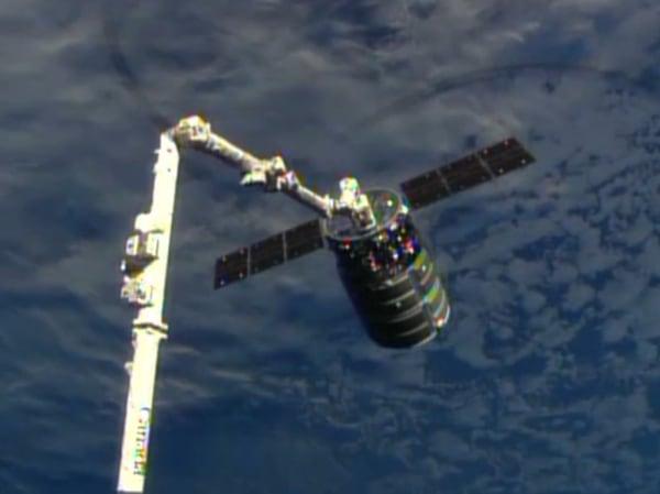 Image: Cygnus capture