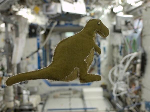 Image: Dinosaur