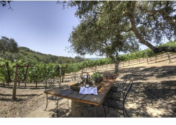 Peggy Fleming's wine estate features decks and patios that include a dining area beneath a grouping of oak trees.