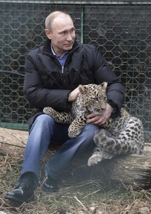 Image: Russian President Putin strokes a Persian leopard during his visit to the Persian Leopard Breeding and Rehabilitation Centre in the Sochi national park