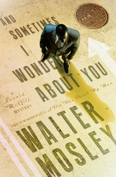 Sometimes I Wonder About You by Walter Mosley