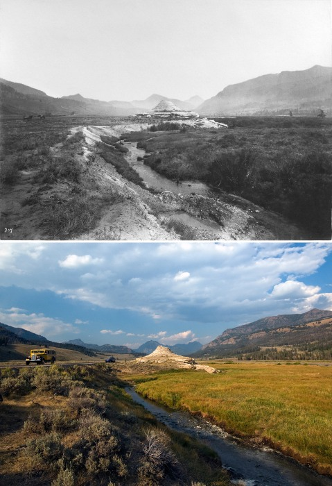 Image: Yellowstone's Soda Butte Creek