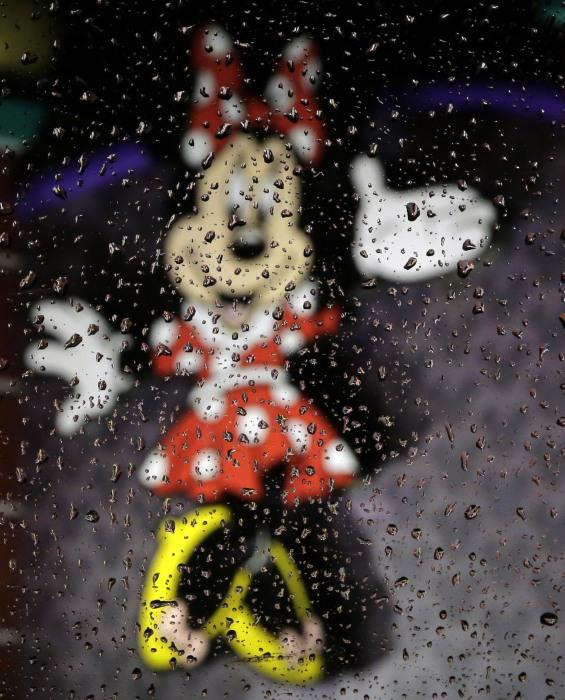 IMAGE: Heavy rain at Walt Disney World