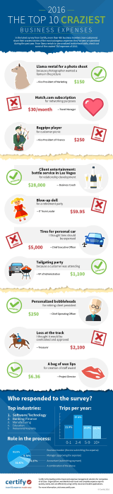 Image: The top 10 craziest business expenses