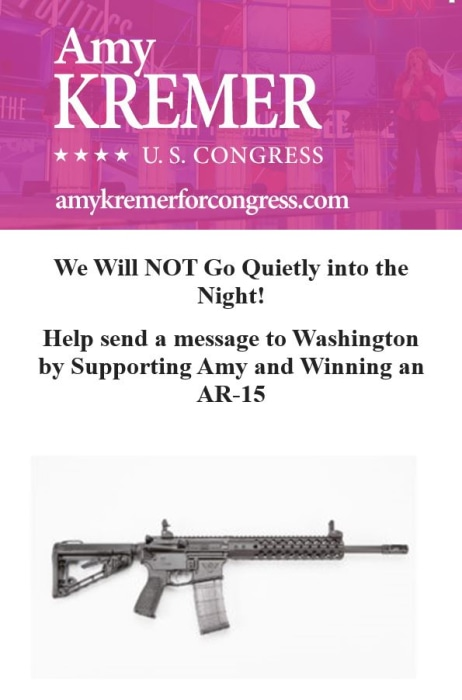 Image: An email sent by Amy Kremer for Congress