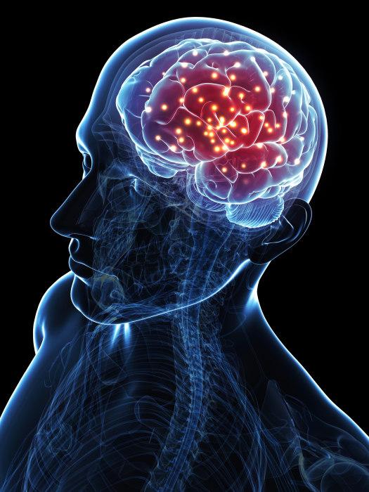 Illustration: Brain activity.