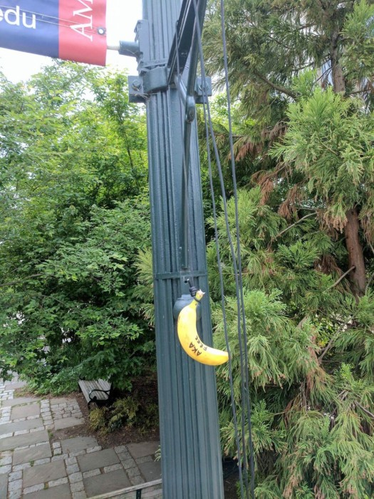 Image: Racist Banana Found Outside the Hurst building at American University