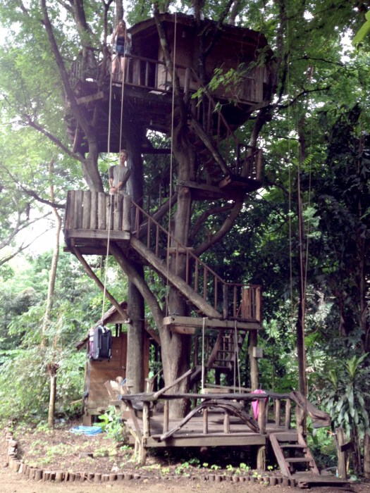 Image: Treehouse