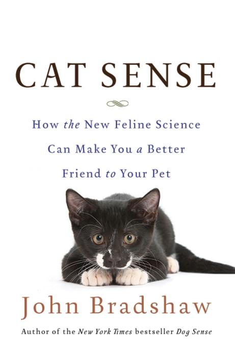 Image: Cat Sense