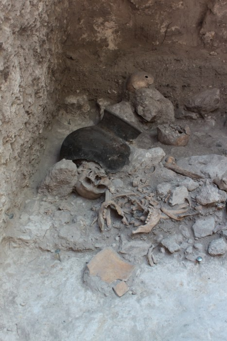 Scientists from the University of Bonn discovered the remains of dismembered human bodies in an artificial cave in the Classic Maya city Uxul in Mexico. Shown here, the cave's interior during the excavations with several skulls, lower jaws and ribs.