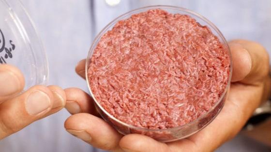 Lab Grown Meat Vegan Lab-grown Meat is Here– But