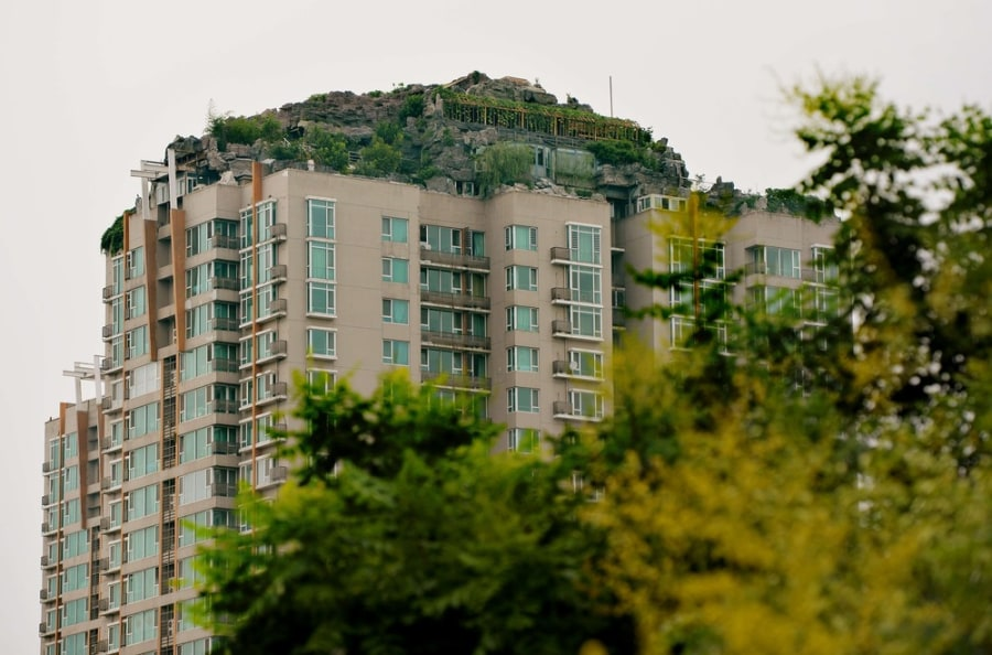Doctor ordered to demolish 'mountain' built atop penthouse apartment in Beijing