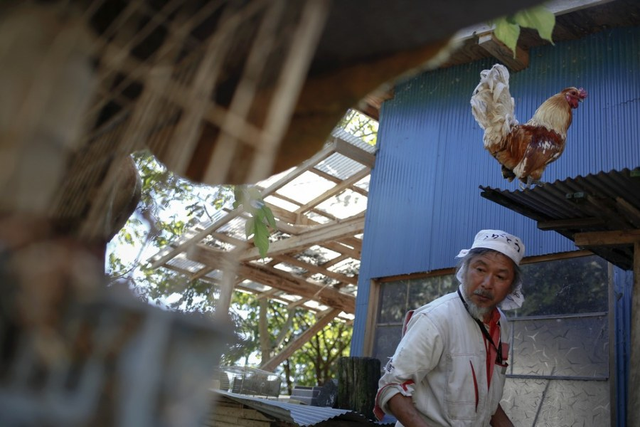 Inside Fukushima's exclusion zone, a farmer sheltered over 500 abandoned animals