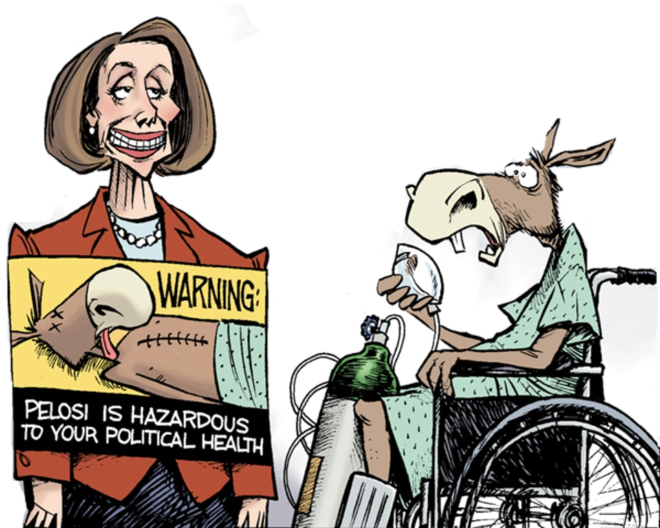 Image result for CARTOONS PELOSI