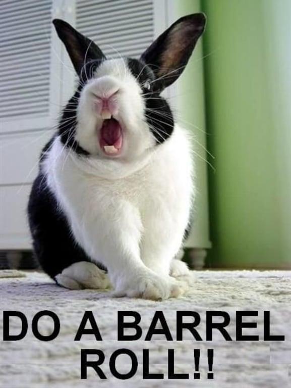 do a barrel roll now?