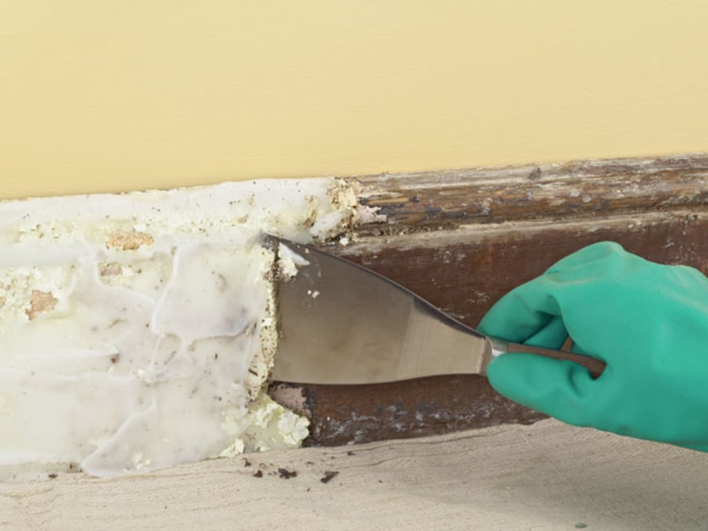 Removing Paint From Walls