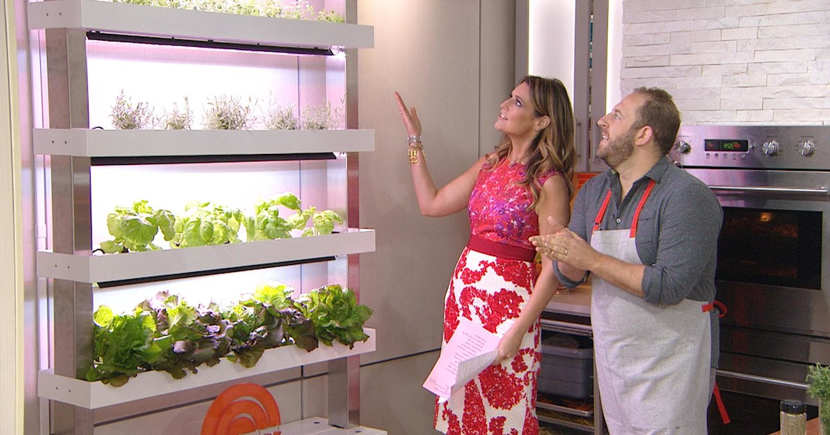 See The TODAY Kitchen's New Vertical Herb Garden