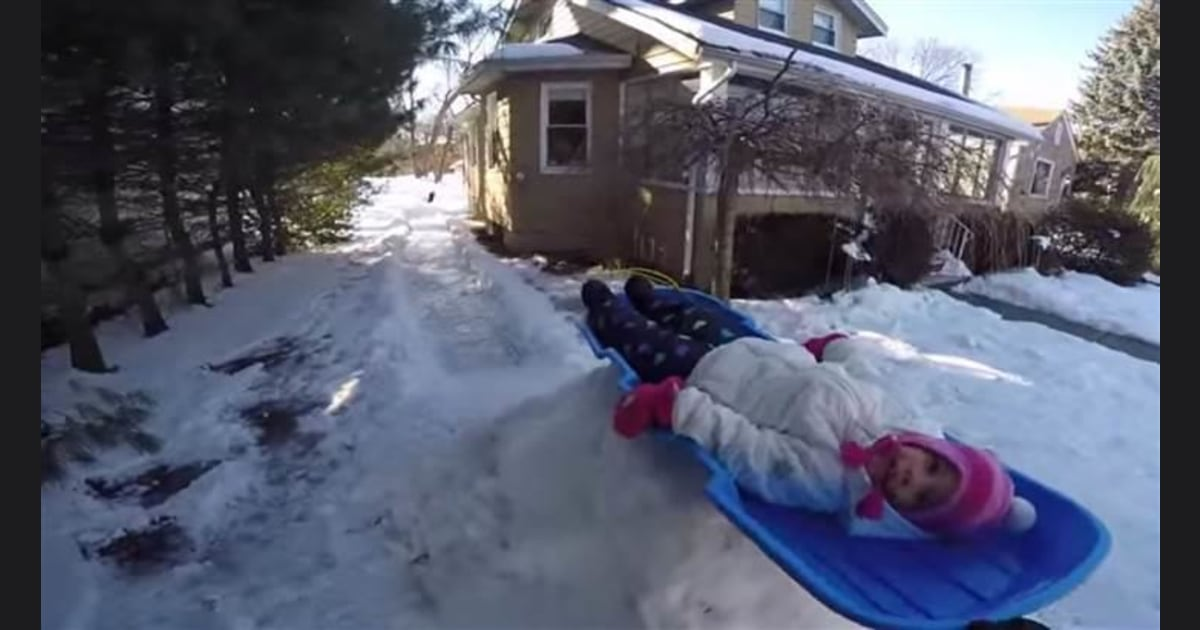 Go!' Watch kids gleefully slide down