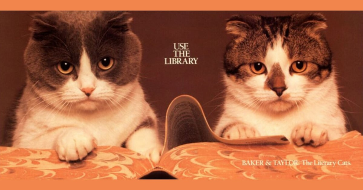 How library cats Baker and Taylor 'read' their way into America's hearts