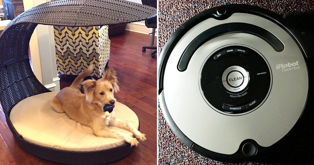 When Roomba Met Dog Poop Man S Poopocalypse Goes Viral