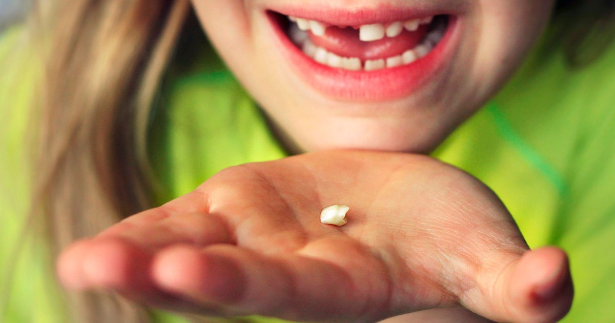 How much does the Tooth Fairy give? See the average payout