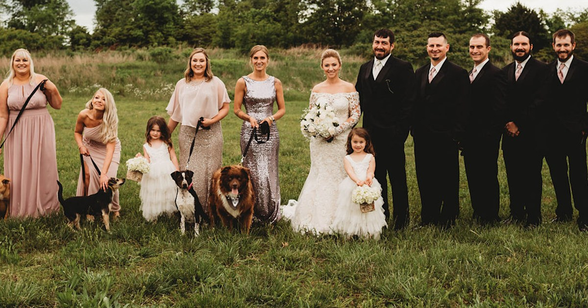 Bride includes rescue dogs in her wedding to raise awareness about adoption