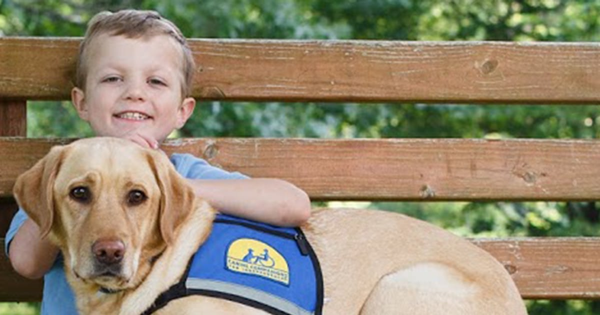 Service dog helps 7-year-old boy prepare for his 10th surgery