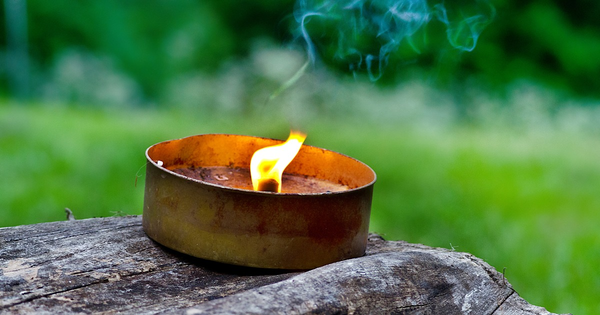How to get rid of mosquitoes this summer: Do citronella candles work?