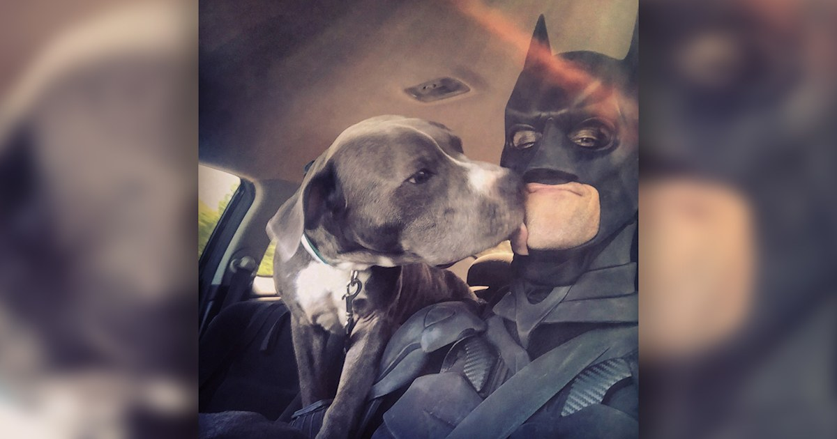 Meet the real-life Batman who gives freedom rides to shelter animals