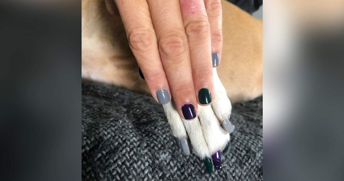 Pawdicures are a thing! People are wearing matching nail polish with their dogs