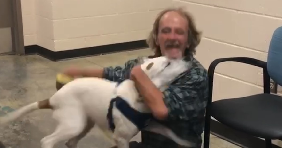 Homeless man reunites with lost dog in heartwarming video